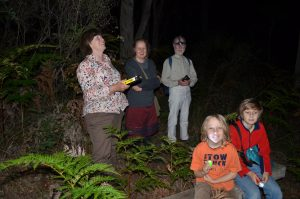 Group surveying bats using Anabat to record echo location sounds at Englebrook Reserve